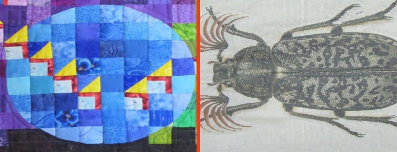 Quilten mit Design von Kaefer und farbig Pattern